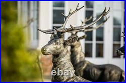 Large Lifesize Cast Iron Standing Stag Deer Looking Right Statue Garden Bronze